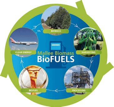 Can we save the algae biofuel industry